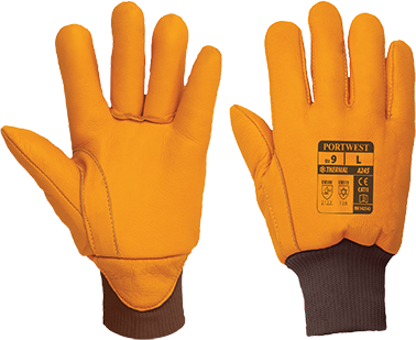 Antarctic Thinsulate Glove