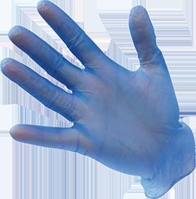 Vinyl Gloves Powdered
