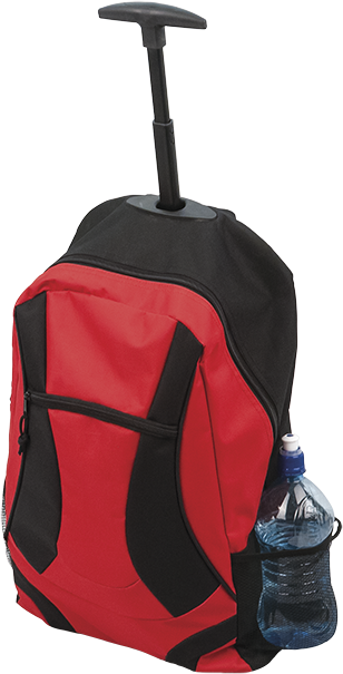 2in1 Trolley Backpack  (30L)