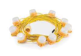 Elite LED Encapsulated Festoon kit 22m x 10 fittings
